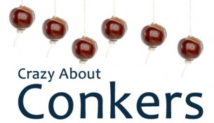 crazy_about_conkers