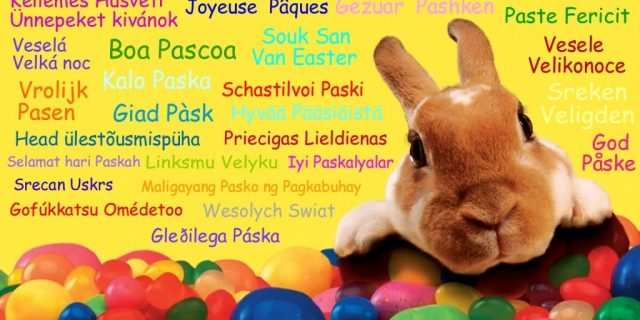 Happy Easter Go Walkabout